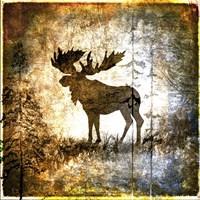 High Country Moose Fine Art Print
