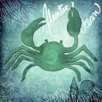 Alantic Ocean Crab Fine Art Print