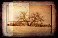 For the Love of Trees V Fine Art Print
