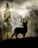 Mystic Deer Fine Art Print