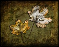 Metallic Leaf 2 Fine Art Print