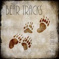 Moose Lodge 2 - Bear Tracks Fine Art Print