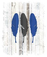 The Blue Moose - Feathers Fine Art Print