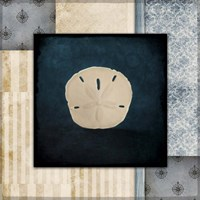 Blue Sea Sand Dollar Fine Art Print