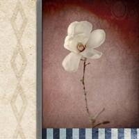 Magnolia Diamond 1 Fine Art Print