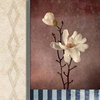 Magnolia Diamond 2 Fine Art Print