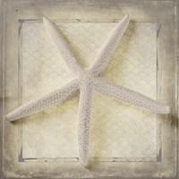 Starfish Fine Art Print