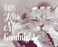 Always Kiss Me Goodnight Sleepy Cat Fine Art Print