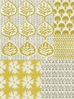 Marigold Patterns I Framed Print