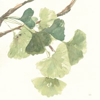 Gingko Leaves I Light Fine Art Print