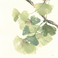 Gingko Leaves II Light Fine Art Print