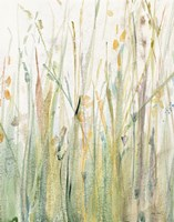 Spring Grasses I Crop Fine Art Print
