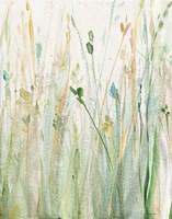 Spring Grasses II Crop Fine Art Print