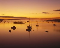 Southwest Harbor Before Sunrise, Mt. Desert Island, Maine Fine Art Print