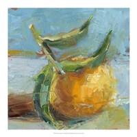 Impressionist Fruit Study III Framed Print