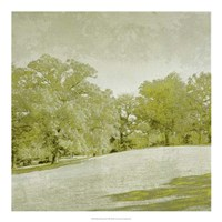 Beryl Landscape  II Framed Print