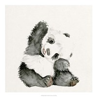 Baby Panda I Fine Art Print