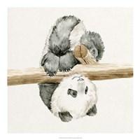 Baby Panda II Fine Art Print