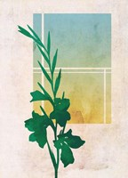 Ombre Gladiolus Flowers Fine Art Print