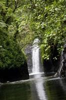 Tobu Vei Tui Waterfall, Tavoro NP, Taveuni, Fiji Fine Art Print