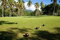 Lawn bowling, Taveuni Estates, Taveuni, Fiji Fine Art Print
