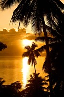 Sunset, Taveuni Estates, Taveuni, Fiji Fine Art Print