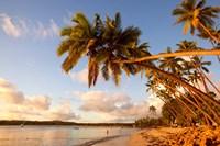 Shangri-la Fijian Resort and Spa, Coral Coast, Viti Levu, Fiji Fine Art Print