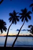 Resort and Spa, Viti Levu, Fiji Fine Art Print