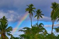 Rainbow, Taveuni, Fiji Fine Art Print