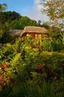 Lush Gardens, Matangi Private Island Resort, Fiji Fine Art Print