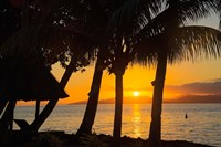 Sunset through Palms, Taveuni, Vanua Levu in Background, Fiji Fine Art Print
