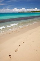 Footprints in sand on Natadola Beach, Coral Coast, Viti Levu, Fiji Fine Art Print