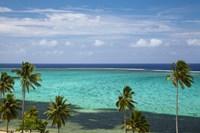 Palm trees and coral reef, Crusoe's Retreat, Coral Coast, Viti Levu, Fiji Fine Art Print