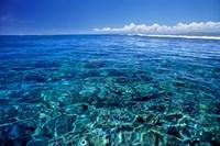 Fiji Islands, Tavarua, coral reef Fine Art Print