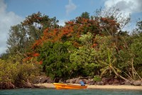 Christmas Tree and Orange Skiff, Turtle Island, Yasawa Islands, Fiji Fine Art Print
