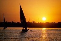 Silhouette of a traditional Egyptian Falucca, Nile River, Luxor, Egypt Fine Art Print