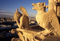 Gargoyles of the Notre Dame Cathedral, Paris, France Fine Art Print