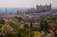 Bratislava Castle, Bratislava, Slovakia Fine Art Print