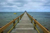 Long wooden pier, Coral Coast, Fiji, South Pacific Fine Art Print