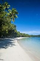 White sand beach and water at the Nanuya Lailai island, the blue lagoon, Fiji Fine Art Print