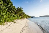 White sandy beach, Fiji Fine Art Print