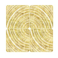 Tree Ring Triptych I Fine Art Print