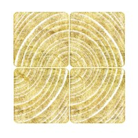 Tree Ring Triptych III Fine Art Print