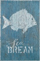 Sea Bream Fine Art Print