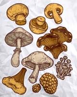 Mushroom Variation Fine Art Print