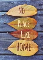 No Place Like Home Leaves Framed Print