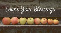 Count Your Blessings Apples Framed Print
