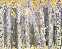 Yellow Leaf Birch Trees Fine Art Print