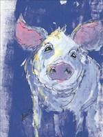 Denim Pig Fine Art Print