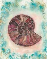 Granite Shell Fine Art Print